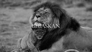 The Island Souls – Bebaskan (Official Music Video)