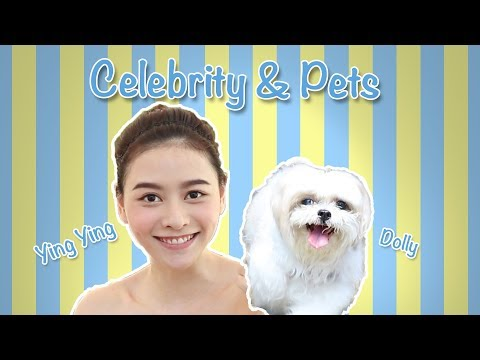 Celebrity & Pets Series: Ying Ying & Dolly (Ep 03)