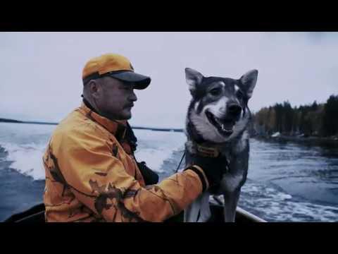 Sasta - Hunting traditions on Kynsisaari island, Nurmes