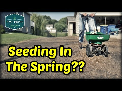 Seeding Your Lawn This Spring?…Watch This First!!! | Spring Lawn Care Tips