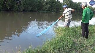 Chài cá khủng trên sông/catch fish in vietnam