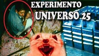 El Sorprendente Experimento Del Universo 25