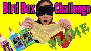 Slime Making Blindfolded + Bird Box Challenge