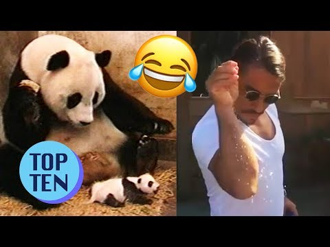 Top 10 Viral Videos of 2017