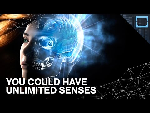 You Could Hack Your Brain To Have Unlimited Senses