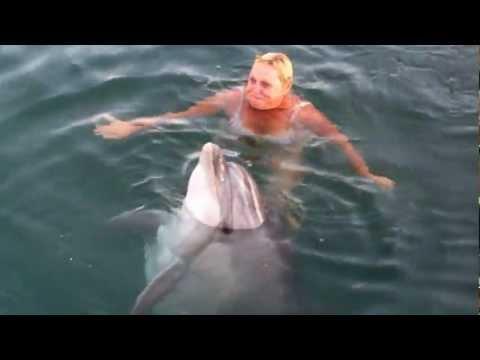 Дельфин Лана. Казачья бухта.