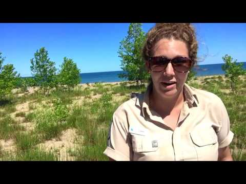 Rondeau's Nature Nuggets: What To Love About Rondeau!