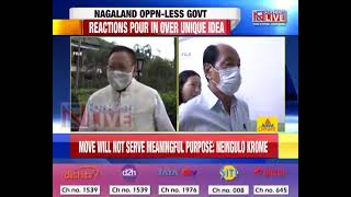 Opposition less Govt in Nagaland is just a political gimmick: Neingulo Krome, NPMHR GS
