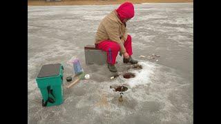Зимняя рыбалка на р.Волхов #6. Бешенный клёв. Закрыли сезон зимней рыбалки в Ленинградской обл.