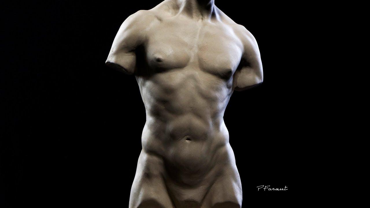 Download Sculpting a Torso