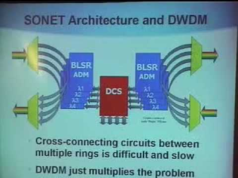 Protection Options for IP over Optical Transport