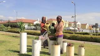 L'immobilier de luxe en plein boom en Ethiopie