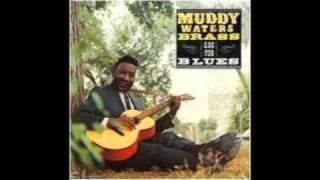 Muddy Waters - Hard Loser