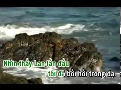 karaoke trich doan Tim Dau Anh Sang Cuoc Doi - ca voi 545.mp4
