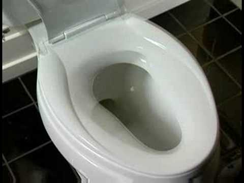 Kohler Transitions Toilet Seat Kohler Toilets Youtube