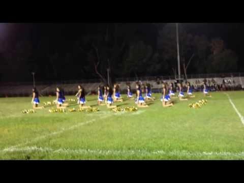 Woodrow Wilson Senior High School Drill Team 2013-2014