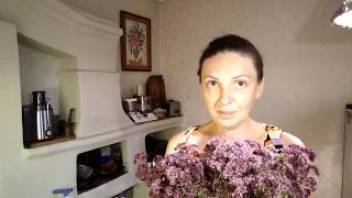 видео Майоран, его полезные свойства, состав и противопоказания