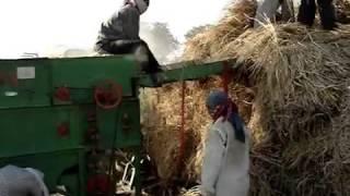 paddy thresher,rice harvester,rice thresher,dhan thresher,thresher for rice