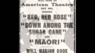 Will Marion Cook - True American Music Genius