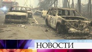 Ситуация с лесными пожарами в Калифорнии выходит из-под контроля.