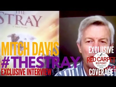 """Mitch Davis, director of """"The Stray"""" interviewed about the new film playing in theaters October 6th"""
