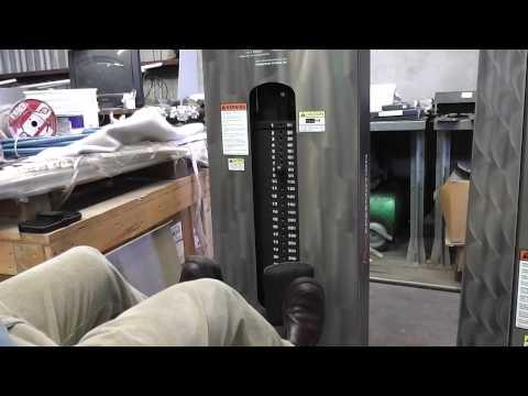 Selling Sitting FreeMotion Calf Raise Strength Training Workout Machine On EBay