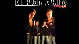 Black Cats - Khanoom | بلک کتس - خانوم