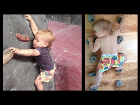 Rock Prodigy Ellie Farmer, The Toddler Who Can Climb Walls