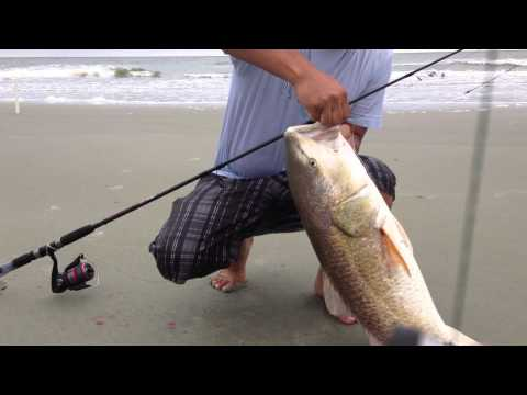 Surf Fishing At Folly Beach