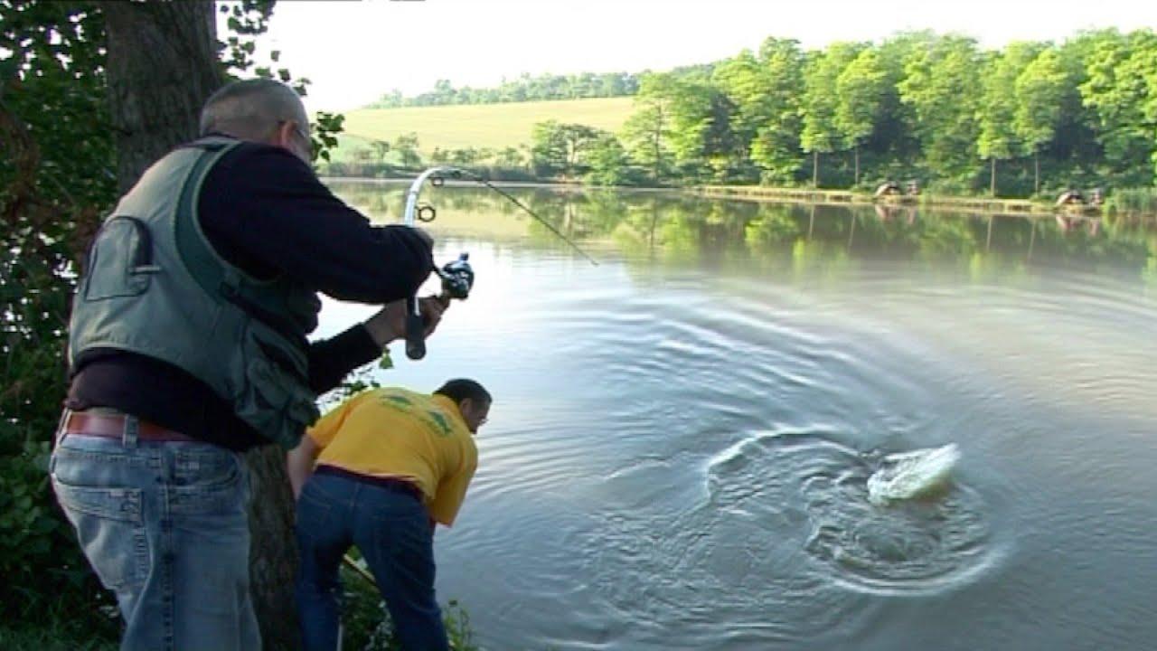 Pecanje šarana na jezeru u Austriji u okolini Beča I deo   Fishing carp