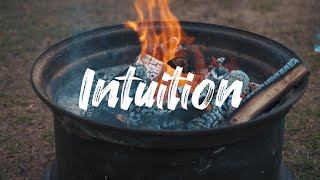 intuitionOS: Intuition as an Operating System (Full) Parts 1-6