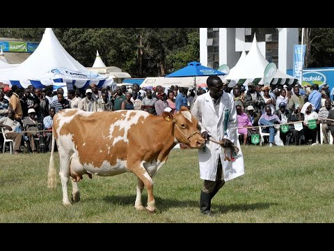 Nairobi International Agriculture Show – Part 1