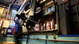 Le Gaec les 13 Fontaines concilie pâturage et robot de traite, santé de l'animal et aire paillée