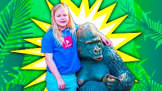 assistant baby gorilla and animal surprise fun adventures with real animals
