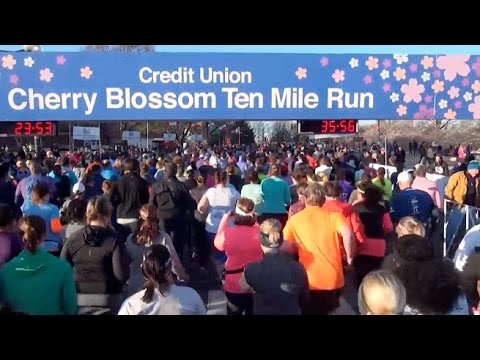 2017 Credit Union Cherry Blossom from RUNNING Broadcast Series