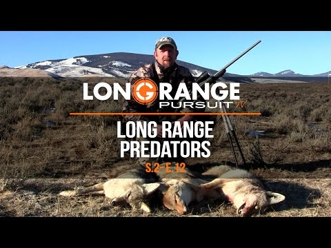 Long Range Pursuit | S2 E12 Long Range Predators