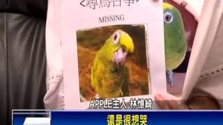 網路名鳥小黃帽失蹤 主人淚尋找立委幫-民視新聞