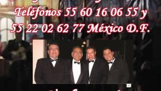Trío en el D.F. Profesional fiestas y serenatas Jerry Moreno  55 54 96 77 81