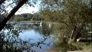 lac de lacanau plage longarisse