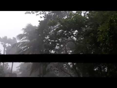 Kumar saun