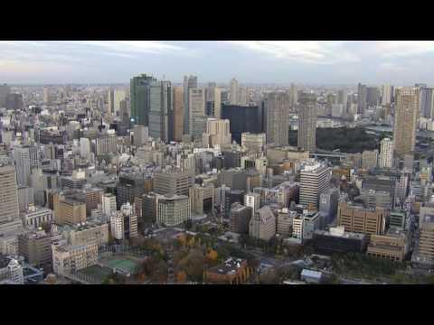TOKYO  - Токио Panorama /Morning, Day,Evening,Night/ 東京