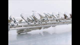 【フルート楽譜】アシタカせっ記~もののけ姫(フルートピアノ伴奏)Princess Mononoke :Ashitaka Sekki|flute|Joe Hisaishi