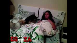 Что делают многие блогеры Дом 2 Даша в постели с собаками