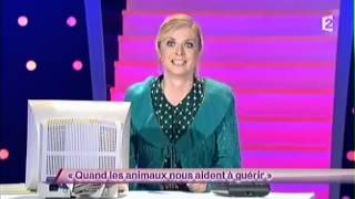 Constance [33] Quand les animaux nous aident à guérir #ONDAR