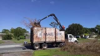 Hurricane Matthew Debris vs The Big Claw