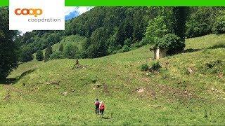Randonnée au Clos du Doubs dans le Jura