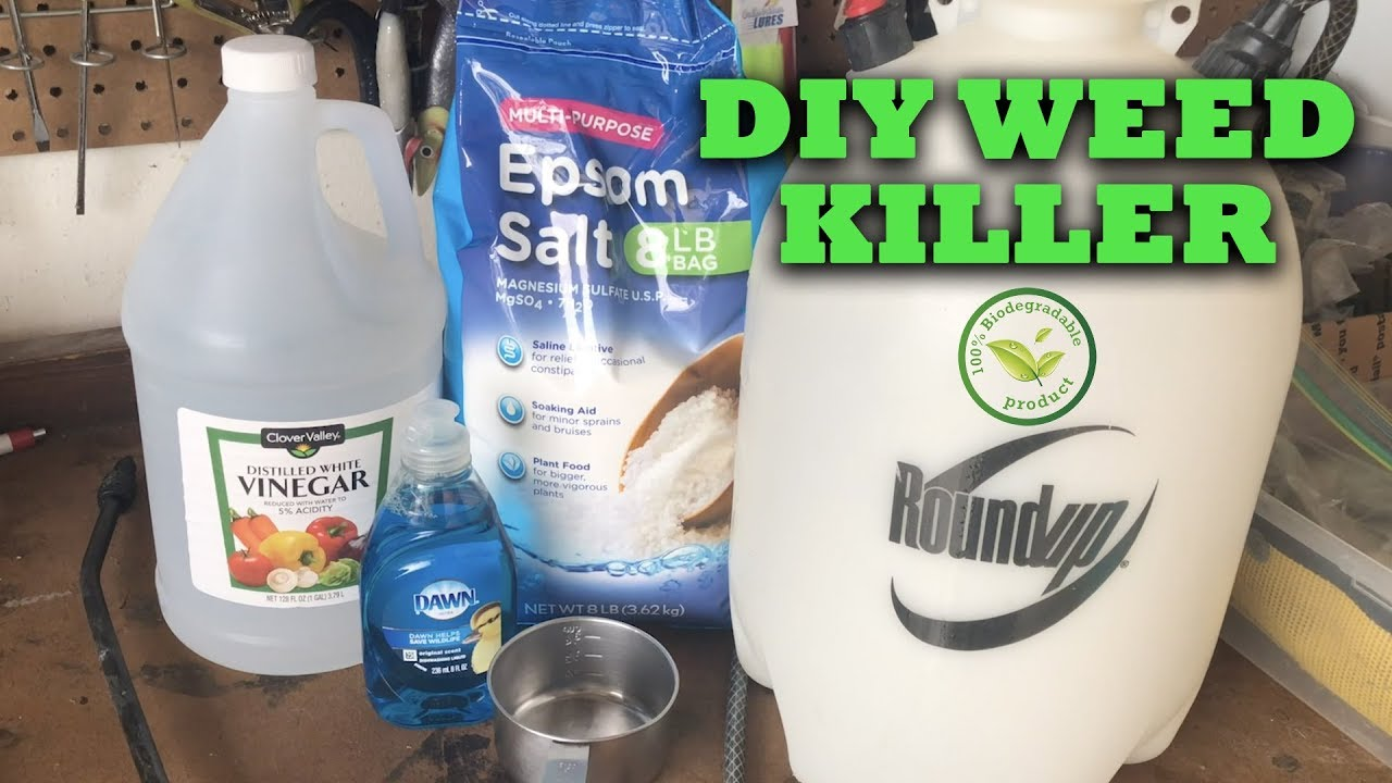 Diy Non Toxic Weed Killer How To Make Your Own Florida Clean Water Youtube