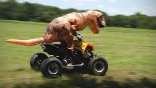 T-REX RIDING A DIRT BIKE AND FOUR WHEELER