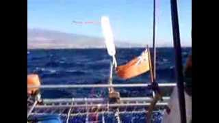 Bumble Bee sailing across the Atlantic Part 1