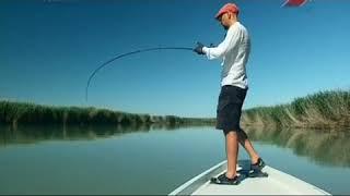 вести с водоемов рыбалка без границ центральный
